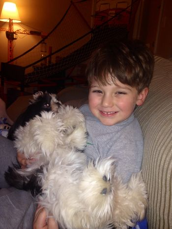 Parker and his dogs