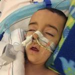 Logan Siciliano age 4 Dec 2015 Caringbridge Post Heart Surgery (2)